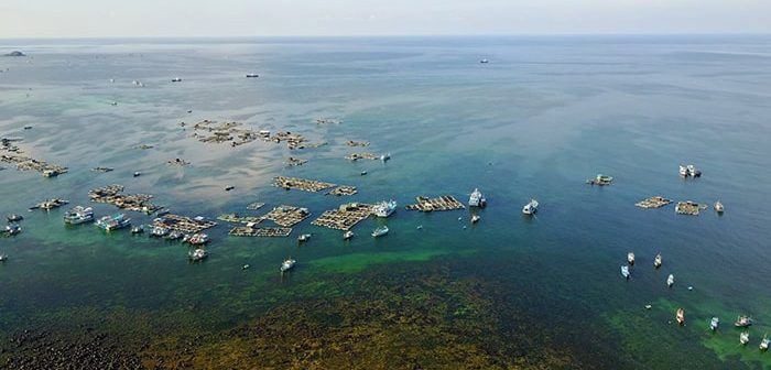Review Kinh nghiệm du lịch đảo Phú Quý đầy đủ và chi tiết
