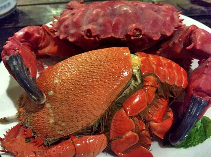 Đặc sản cua đỏ, cua huỳnh đế trên đảo Phú Quý