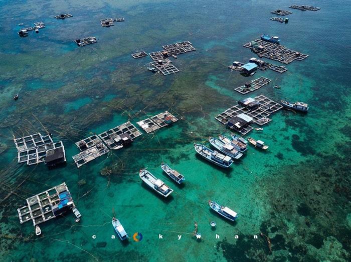 Vẻ đẹp của đảo Phú Quý