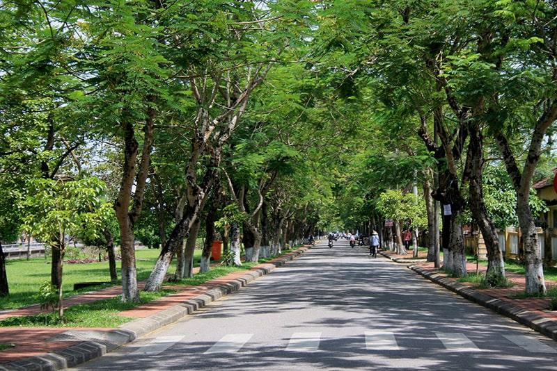 Đạp xe qua những con phố yên bình ở Huế