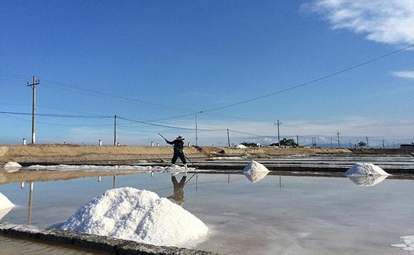 Những cánh đồng muối lấp lánh như gương