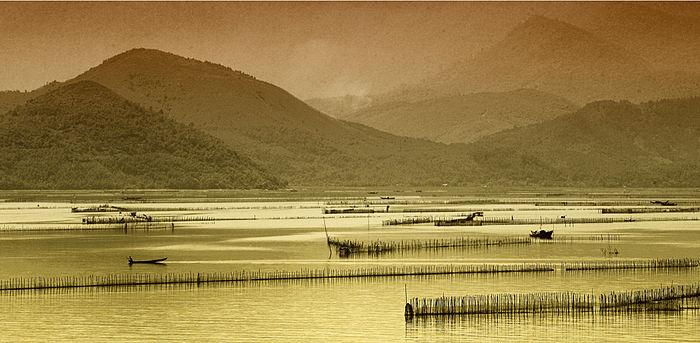 Vẻ hoang sơ của Phá Tam Giang