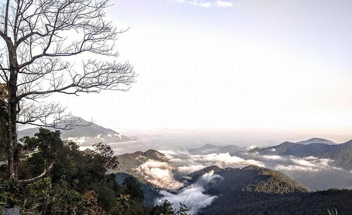 Vườn quốc gia Bạch Mã những ngày sương mờ