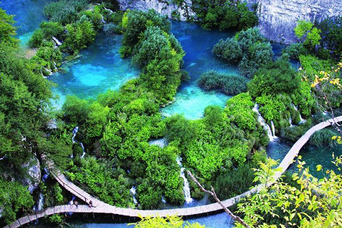 Vườn Quốc Gia Bạch Mã là là địa điểm tham quan phù hợp khi du lịch Huế mùa thu