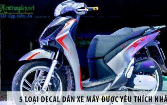 5 loại decal dán xe máy được yêu thích nhất hiện nay