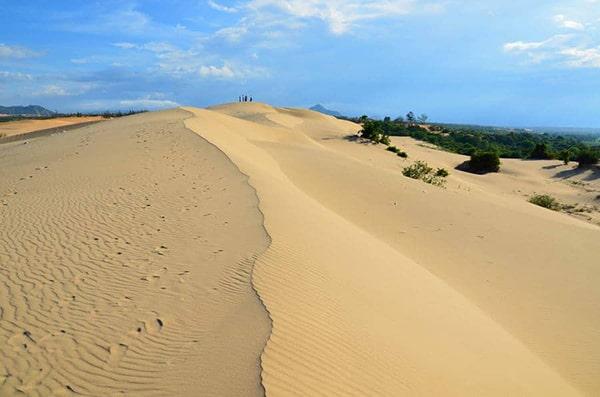 Đồi cát Nam Cương là 1 trong những địa điểm không thể bỏ qua ở Ninh Thuận