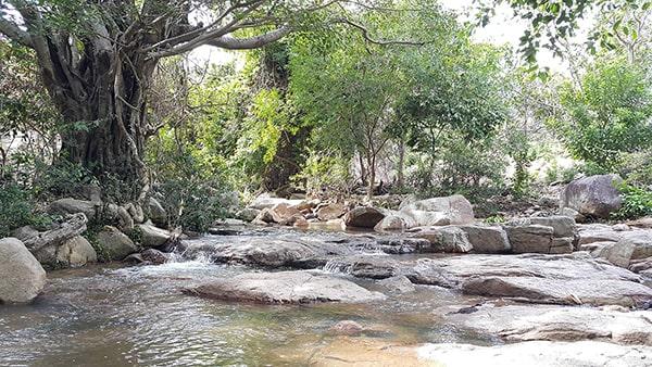 Suối Lồ Ồ là 1 trong những địa điểm không thể bỏ qua ở Ninh Thuận