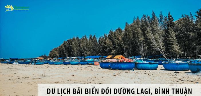 Du lịch bãi biển Đồi Dương Lagi và những điều cần biết