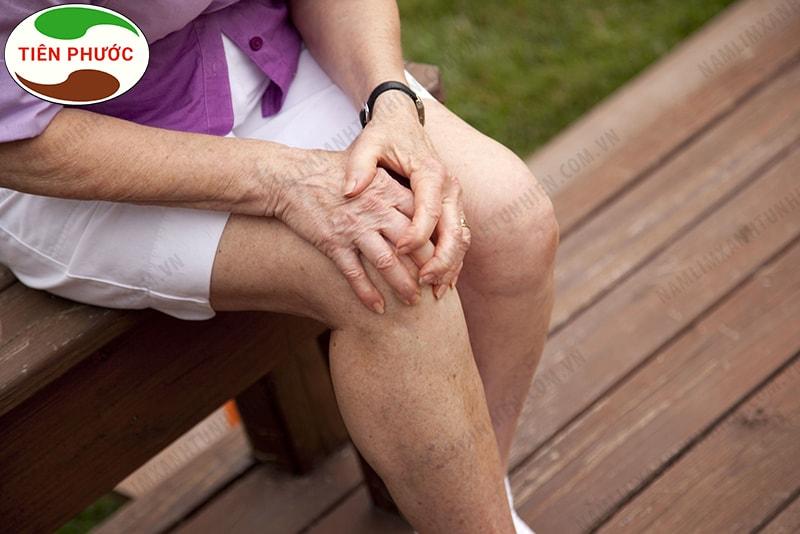 Nấm lim xanh chứa nhiều dược chất giúp phòng ngừa và điều trị các bệnh về khớp