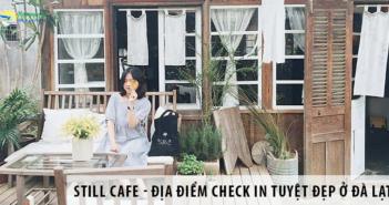 Still Cafe - Địa Điểm Check In Đẹp Ngỡ Ngàng Ở Thành Phố Hoa Đà Lạt